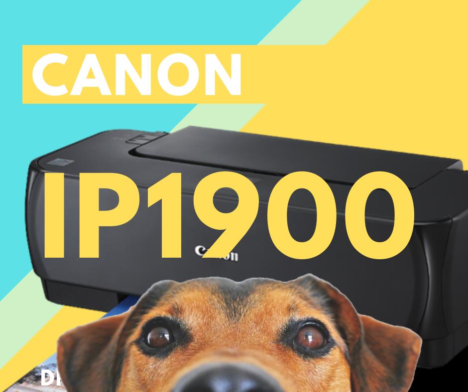 Descargar Instalador Driver de Impresora Canon IP1900 gratis